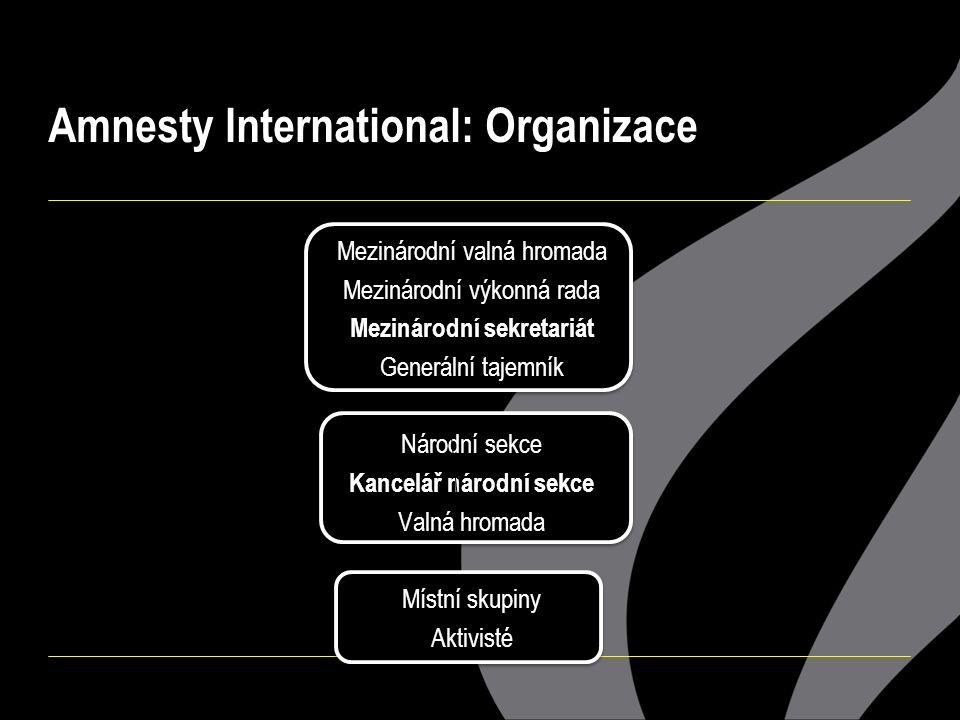Amnesty International: Organizace Mezinárodní valná hromada Mezinárodní výkonná rada Mezinárodní sekretariát Generální tajemník Národní sekce Kancelář národní sekce Valná hromada Místní skupiny Aktivisté