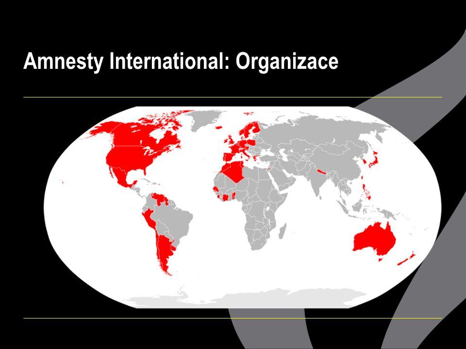 Amnesty International: Organizace