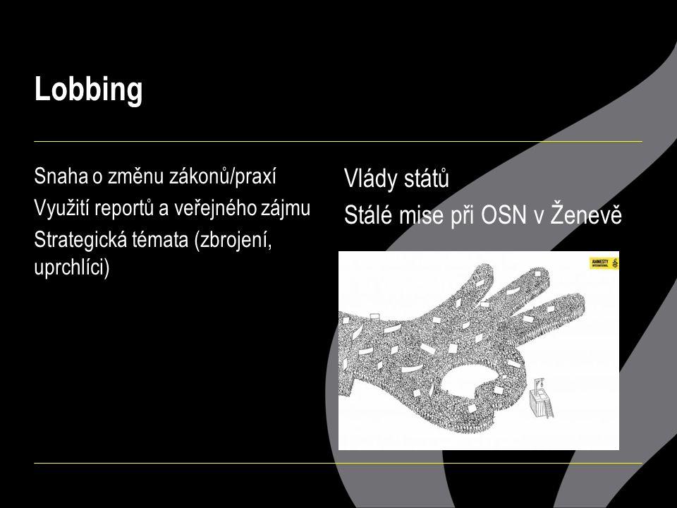 Lobbing Snaha o změnu zákonů/praxí Využití reportů a veřejného zájmu Strategická témata (zbrojení, uprchlíci) Vlády států Stálé mise při OSN v Ženevě