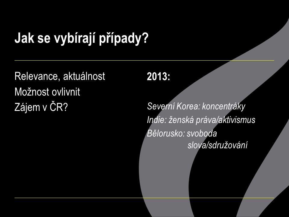 Jak se vybírají případy? Relevance, aktuálnost Možnost ovlivnit Zájem v ČR? 2013: Severní Korea: koncentráky Indie: ženská práva/aktivismus Bělorusko: