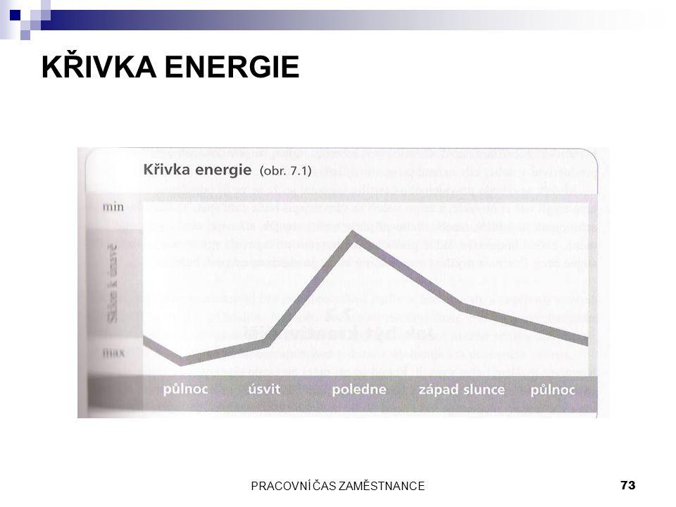 PRACOVNÍ ČAS ZAMĚSTNANCE 73 KŘIVKA ENERGIE