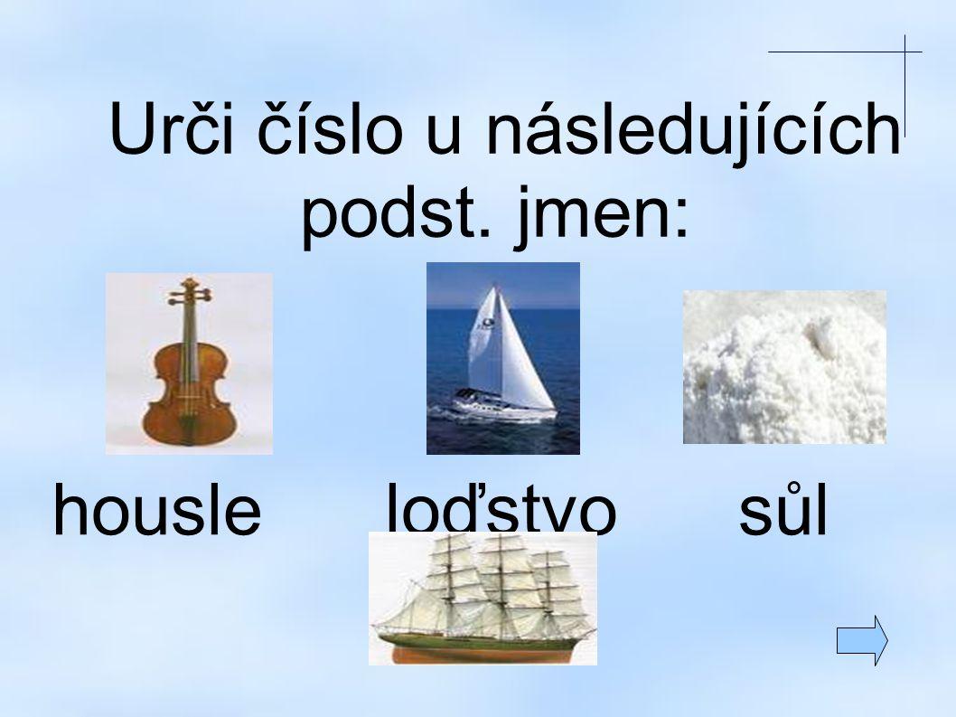 Urči číslo u následujících podst. jmen: housle loďstvo sůl