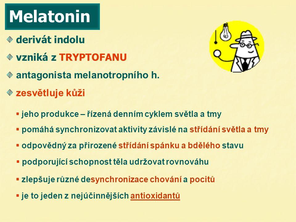Melatonin derivát indolu vzniká z TRYPTOFANU antagonista melanotropního h. zesvětluje kůži   pomáhá synchronizovat aktivity závislé na střídání svět