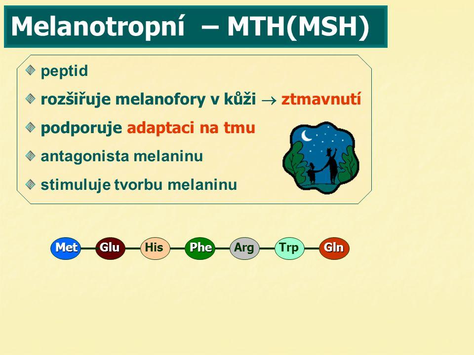 Melanotropní – MTH(MSH) peptid rozšiřuje melanofory v kůži  ztmavnutí podporuje adaptaci na tmu antagonista melaninu stimuluje tvorbu melaninu TrpPhe