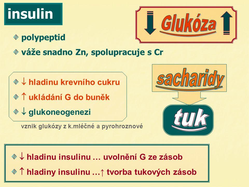 insulin polypeptid váže snadno Zn, spolupracuje s Cr  hladinu krevního cukru  ukládání G do buněk  glukoneogenezi  hladinu insulinu … uvolnění G z