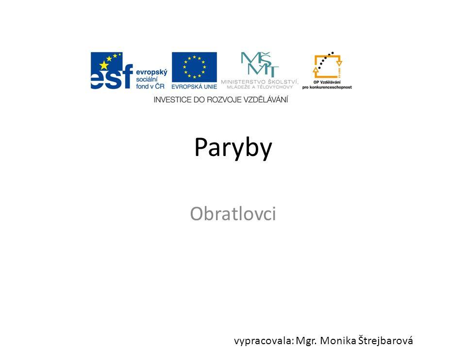 Paryby Obratlovci vypracovala: Mgr. Monika Štrejbarová
