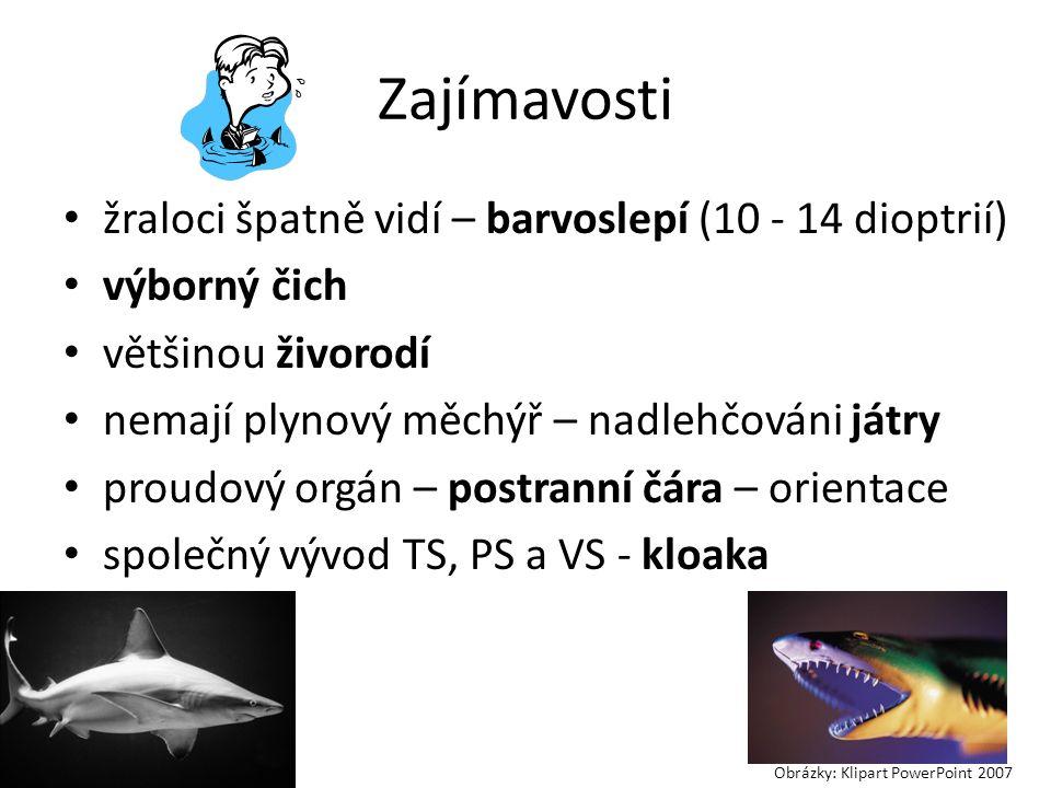 Zajímavosti žraloci špatně vidí – barvoslepí (10 - 14 dioptrií) výborný čich většinou živorodí nemají plynový měchýř – nadlehčováni játry proudový orgán – postranní čára – orientace společný vývod TS, PS a VS - kloaka Obrázky: Klipart PowerPoint 2007