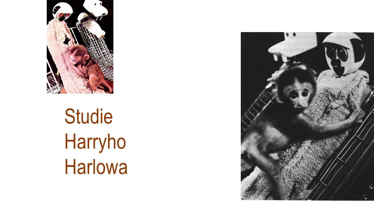 Studie Harryho Harlowa