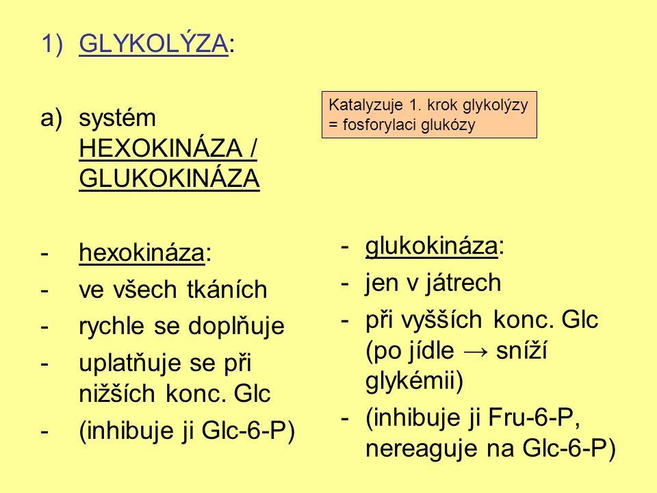 1)GLYKOLÝZA: a)systém HEXOKINÁZA / GLUKOKINÁZA -hexokináza: -ve všech tkáních -rychle se doplňuje -uplatňuje se při nižších konc. Glc -(inhibuje ji Gl