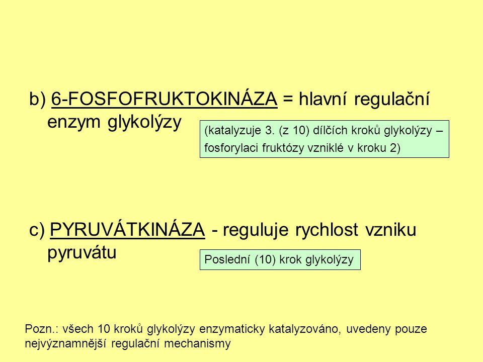 b) 6-FOSFOFRUKTOKINÁZA = hlavní regulační enzym glykolýzy c) PYRUVÁTKINÁZA - reguluje rychlost vzniku pyruvátu (katalyzuje 3. (z 10) dílčích kroků gly
