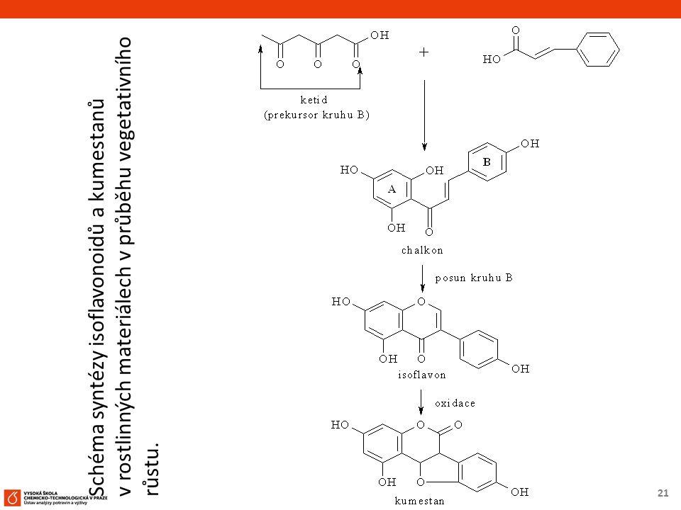 21 Schéma syntézy isoflavonoidů a kumestanů v rostlinných materiálech v průběhu vegetativního růstu.