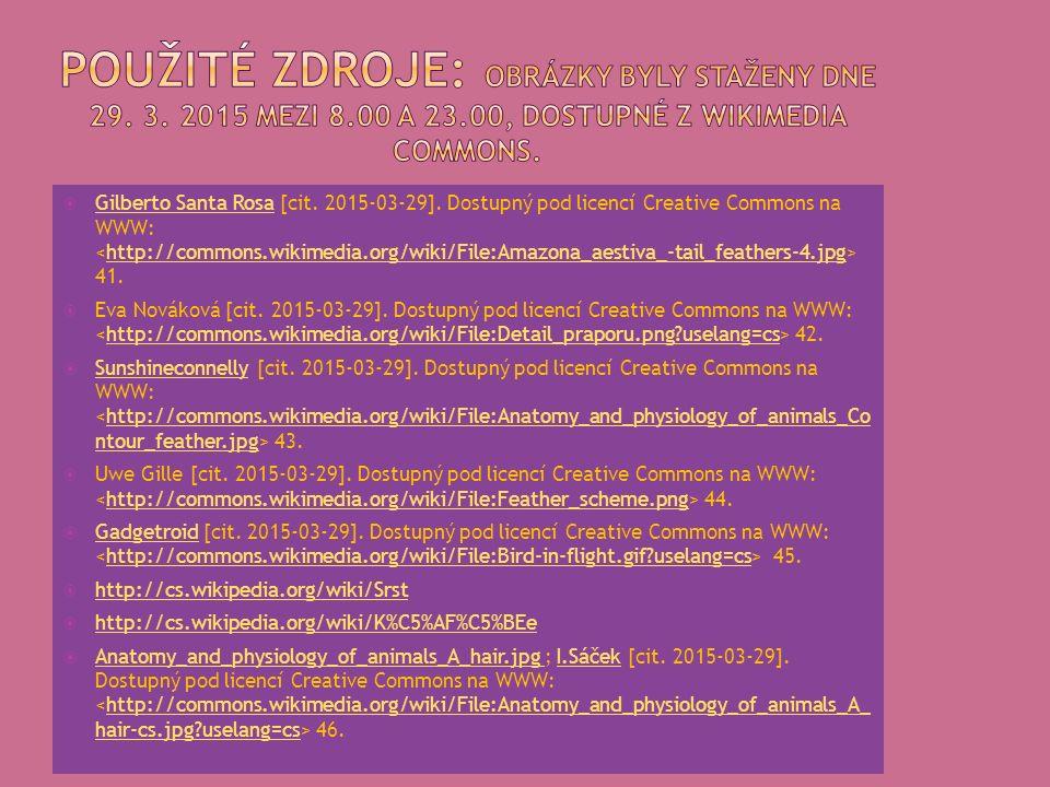  Gilberto Santa Rosa [cit. 2015-03-29]. Dostupný pod licencí Creative Commons na WWW: 41.