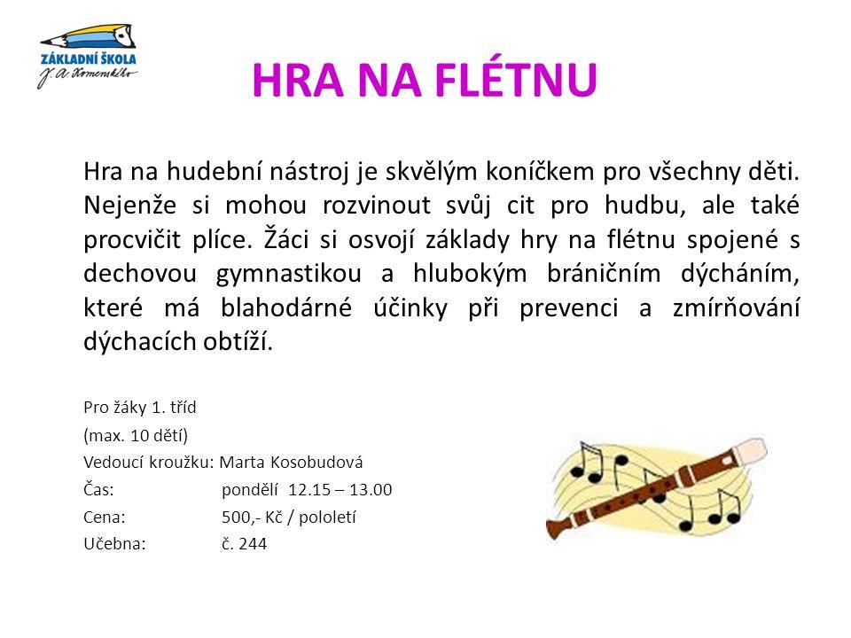 HRA NA FLÉTNU Hra na hudební nástroj je skvělým koníčkem pro všechny děti.