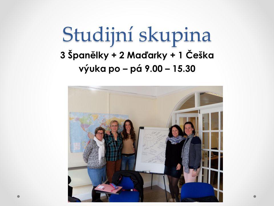 Studijní skupina 3 Španělky + 2 Maďarky + 1 Češka výuka po – pá 9.00 – 15.30