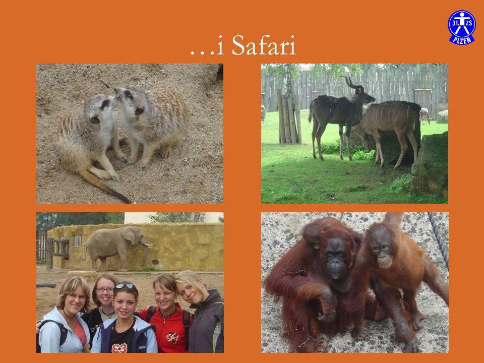 …i Safari