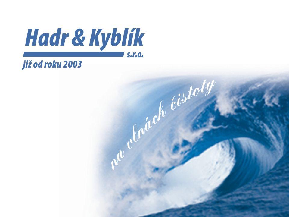 Společnost byla založena dne 13.1.2003 za účelem poskytování úklidových služeb.