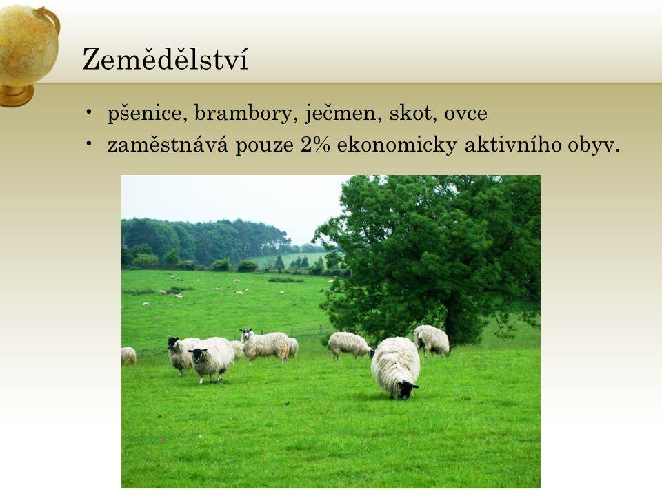 Zemědělství pšenice, brambory, ječmen, skot, ovce zaměstnává pouze 2% ekonomicky aktivního obyv.