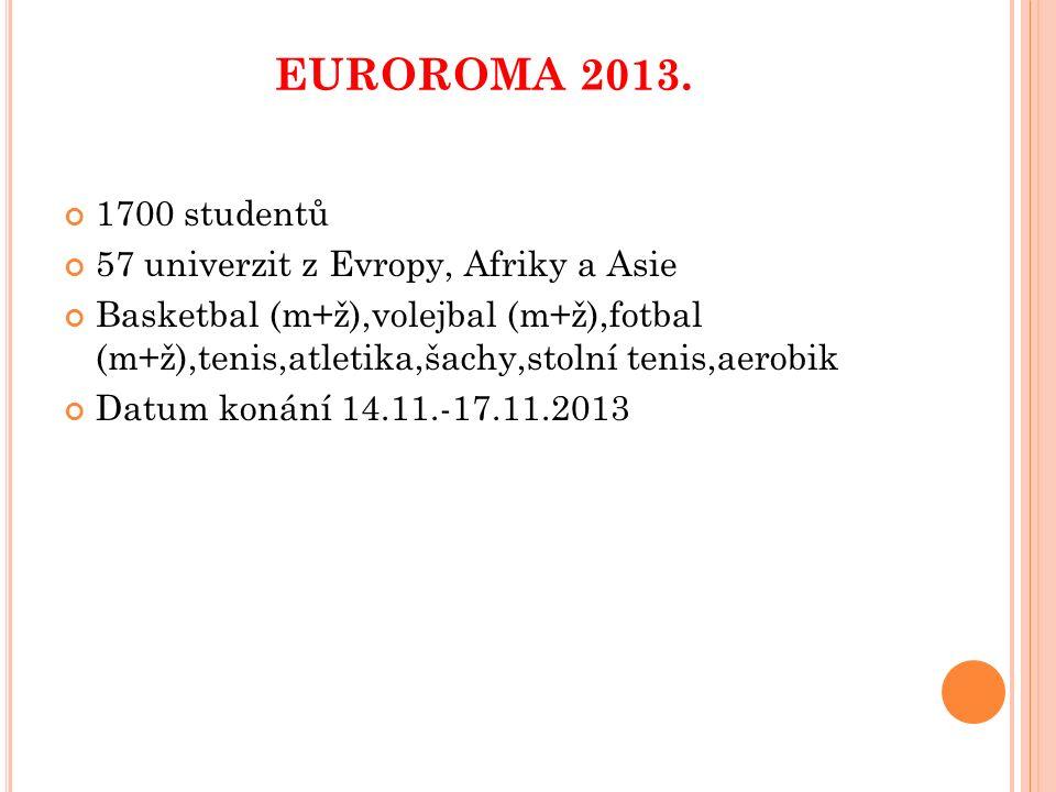EUROROMA 2013 November