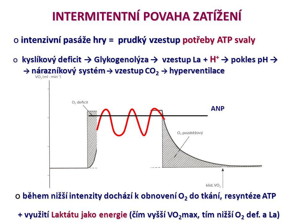 INTERMITENTNÍ POVAHA ZATÍŽENÍ o intenzivní pasáže hry = prudký vzestup potřeby ATP svaly o kyslíkový deficit → Glykogenolýza →vzestupLa + H + →pokles