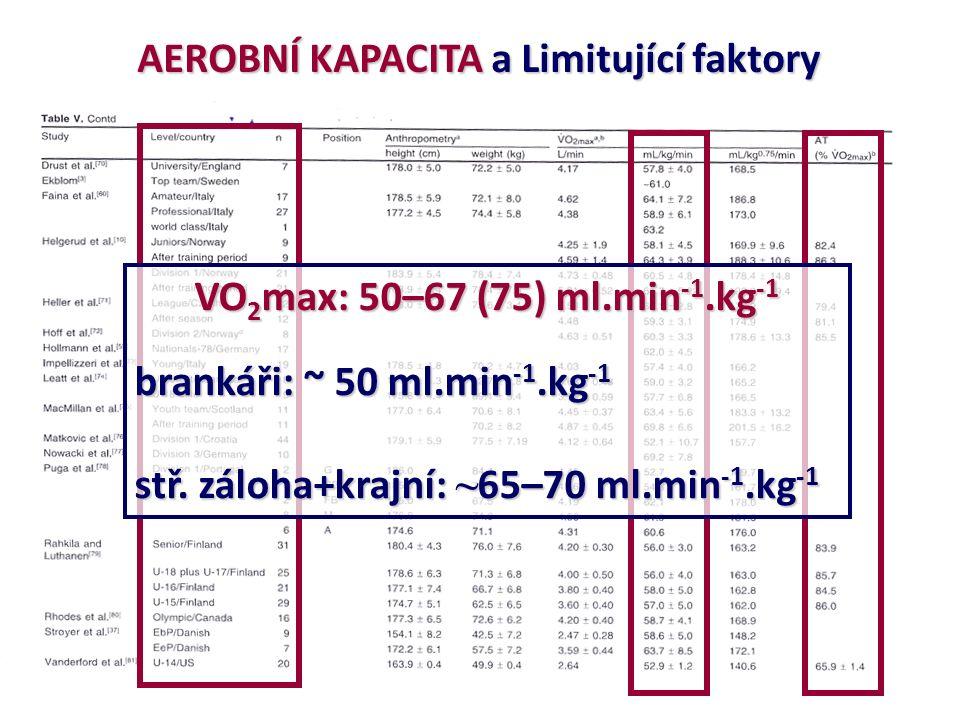 VO 2 max: 50–67 (75) ml.min -1.kg -1 brankáři: ~ 50 ml.min -1.kg -1 stř. záloha+krajní: ~ 65–70 ml.min -1.kg -1 AEROBNÍ KAPACITA a Limitující faktory