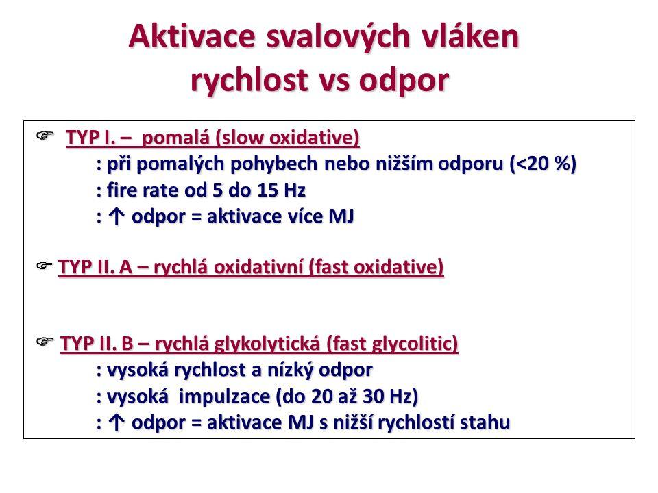 Aktivace svalových vláken rychlost vs odpor  TYP I. – pomalá (slow oxidative)  TYP I. – pomalá (slow oxidative) : při pomalých pohybech nebo nižším