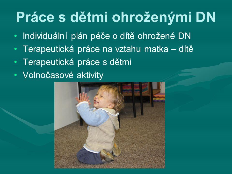 Práce s dětmi ohroženými DN Individuální plán péče o dítě ohrožené DN Terapeutická práce na vztahu matka – dítě Terapeutická práce s dětmi Volnočasové aktivity