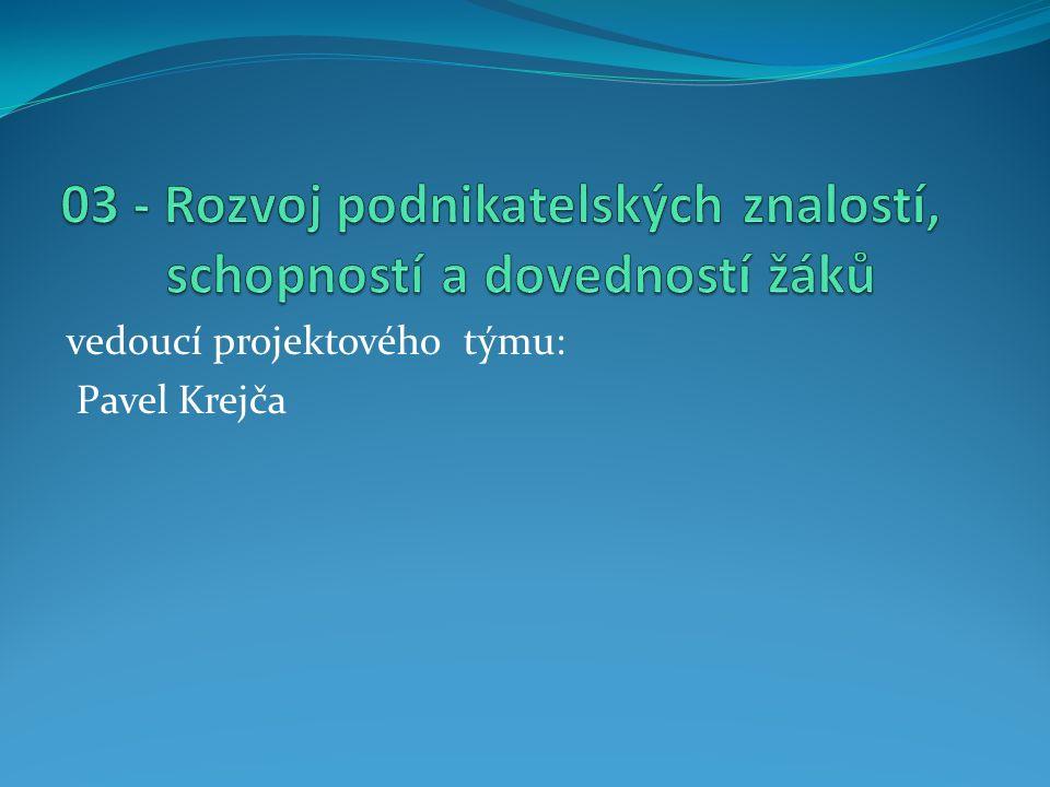 vedoucí projektového týmu: Pavel Krejča