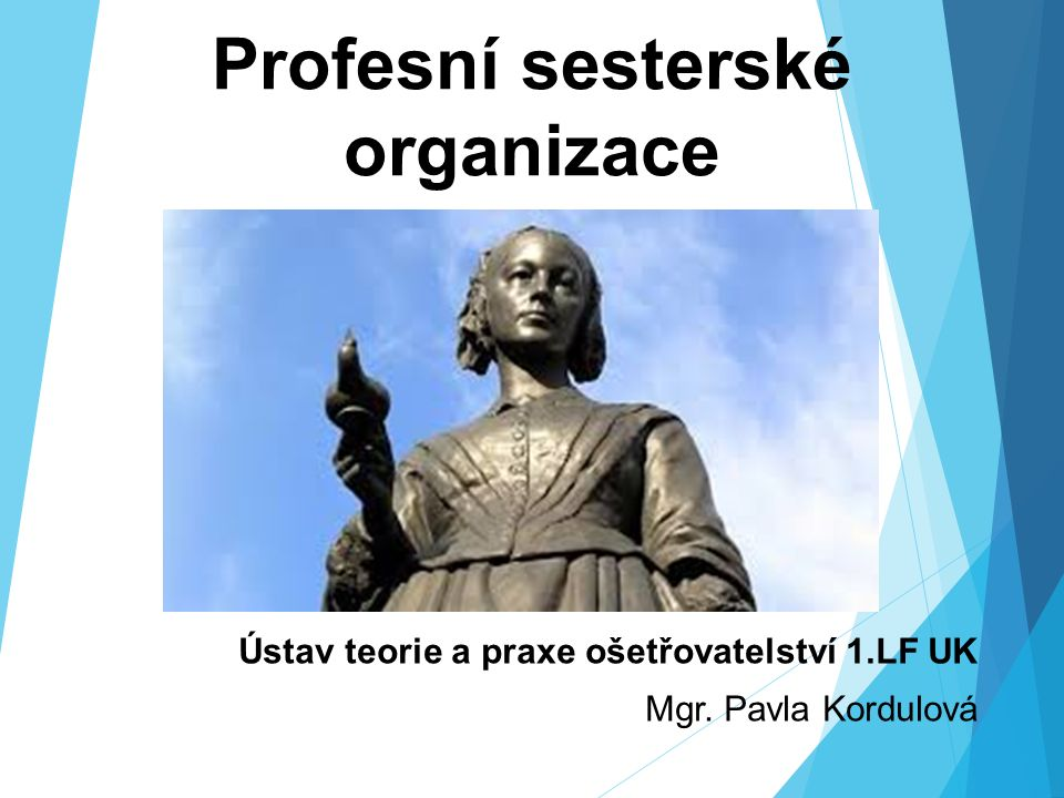 Profesní sesterské organizace Ústav teorie a praxe ošetřovatelství 1.LF UK Mgr. Pavla Kordulová