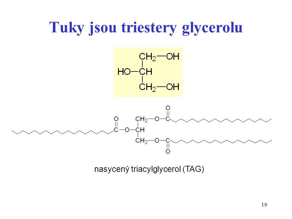 19 Tuky jsou triestery glycerolu nasycený triacylglycerol (TAG)