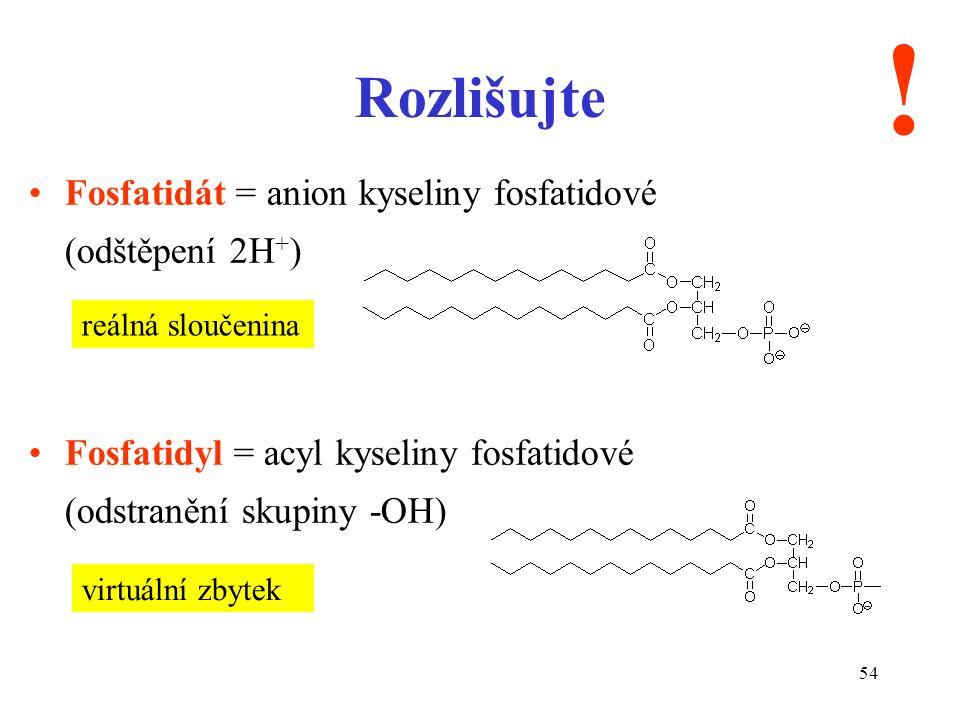 54 Rozlišujte Fosfatidát = anion kyseliny fosfatidové (odštěpení 2H + ) Fosfatidyl = acyl kyseliny fosfatidové (odstranění skupiny -OH) .