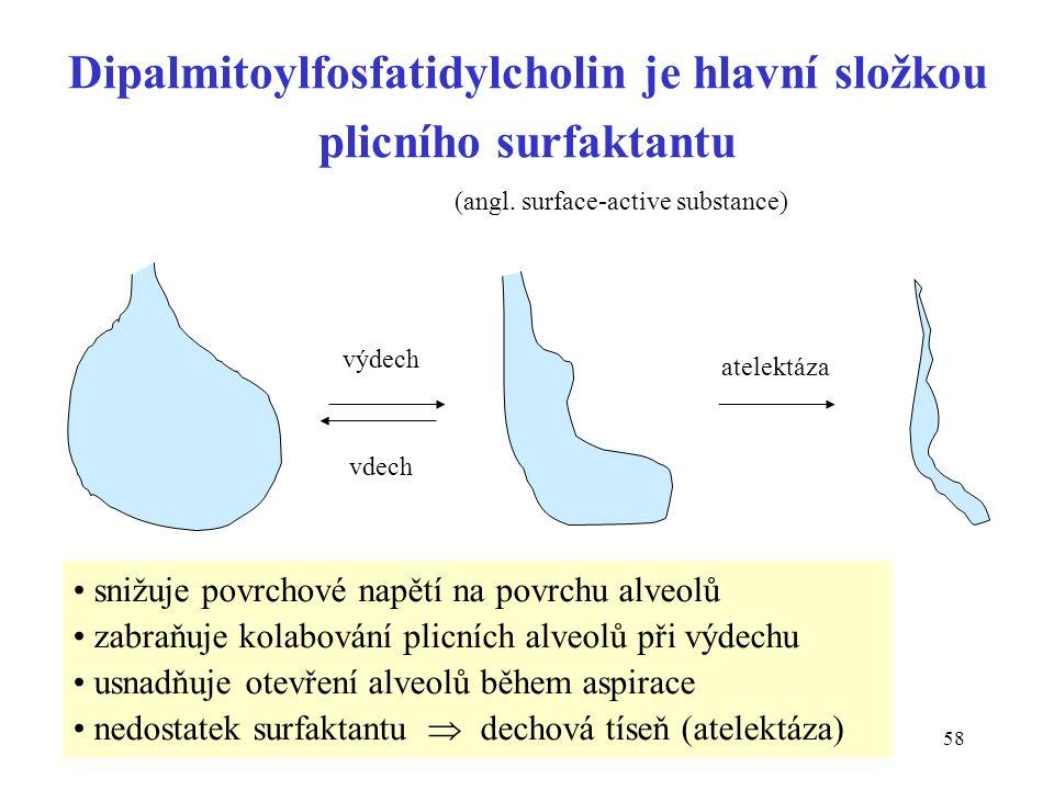 58 Dipalmitoylfosfatidylcholin je hlavní složkou plicního surfaktantu vdech výdech atelektáza snižuje povrchové napětí na povrchu alveolů zabraňuje kolabování plicních alveolů při výdechu usnadňuje otevření alveolů během aspirace nedostatek surfaktantu  dechová tíseň (atelektáza) (angl.