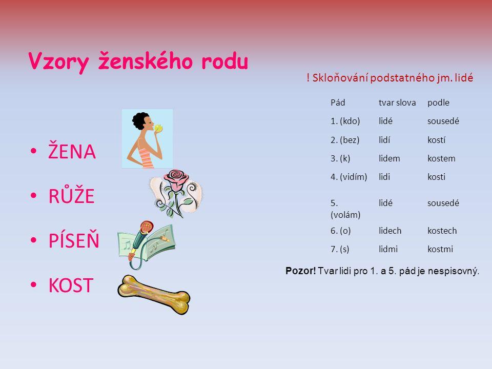 Vzory ženského rodu ŽENA RŮŽE PÍSEŇ KOST Pádtvar slovapodle 1.