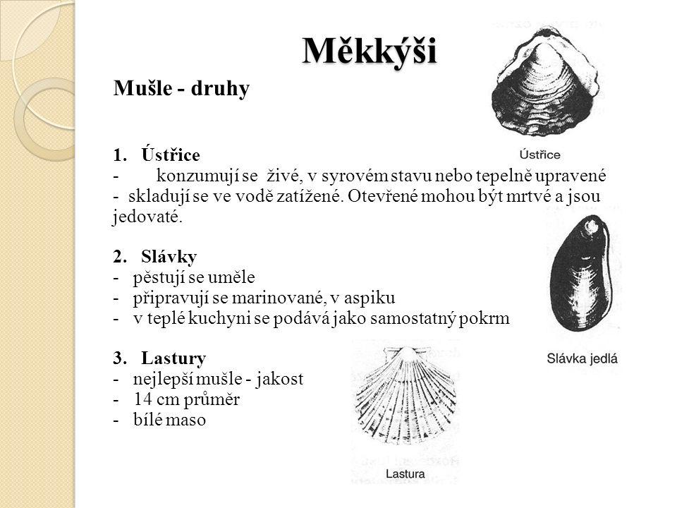 Měkkýši Měkkýši Mušle - druhy 1.