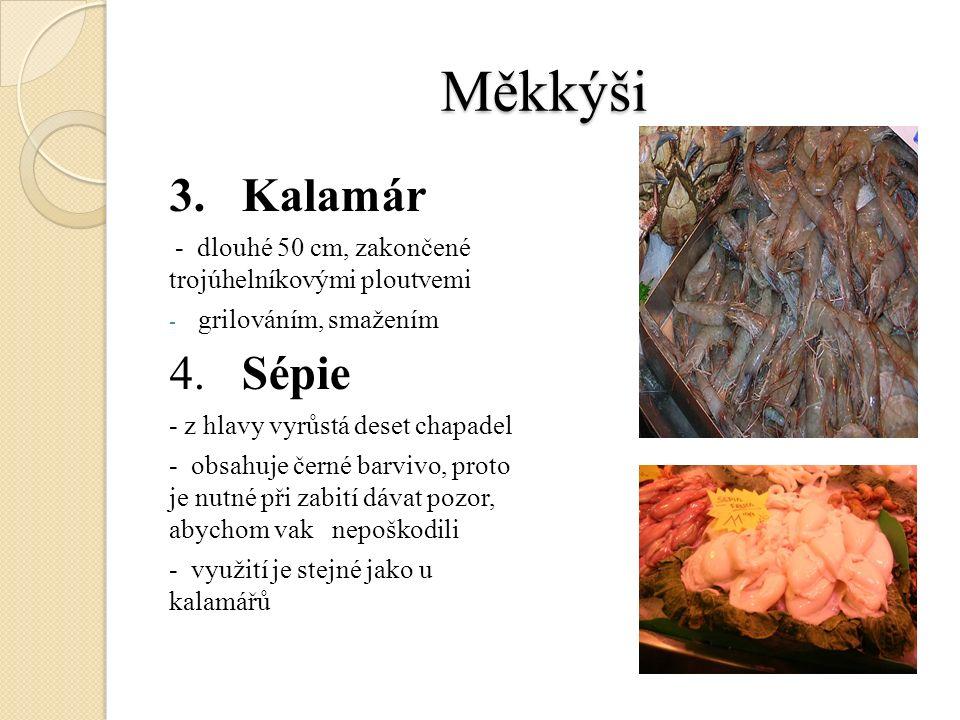 Měkkýši 3. Kalamár - dlouhé 50 cm, zakončené trojúhelníkovými ploutvemi - grilováním, smažením 4.