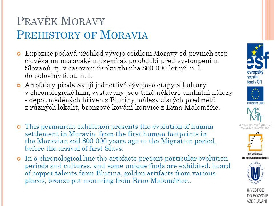 P RAVĚK M ORAVY P REHISTORY OF M ORAVIA Expozice podává přehled vývoje osídlení Moravy od prvních stop člověka na moravském území až po období před vystoupením Slovanů, tj.