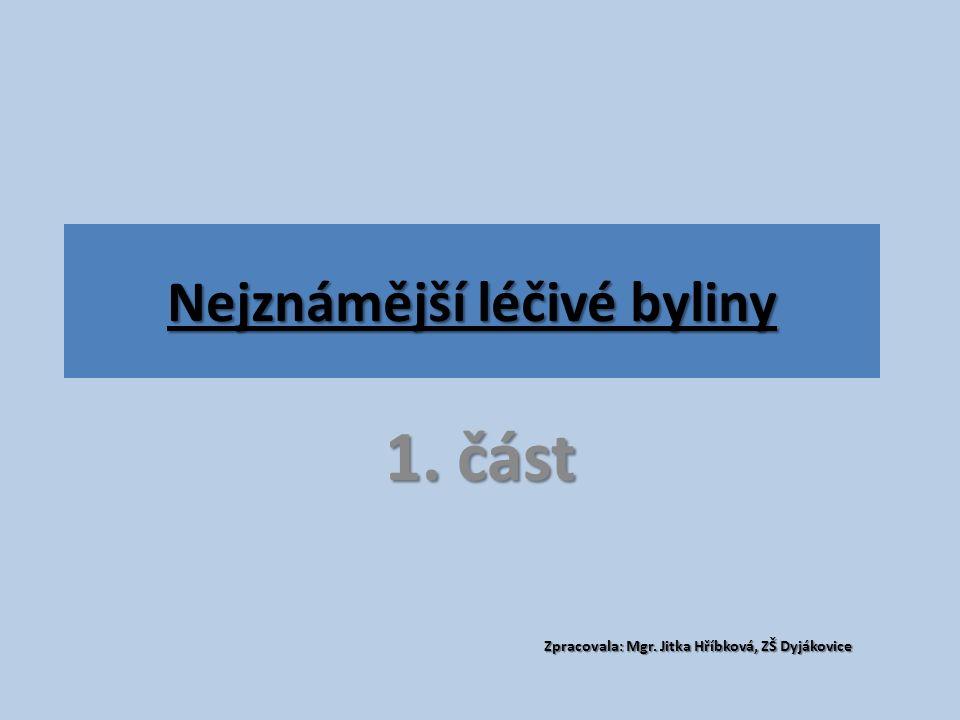 Nejznámější léčivé byliny 1. část Zpracovala: Mgr. Jitka Hříbková, ZŠ Dyjákovice