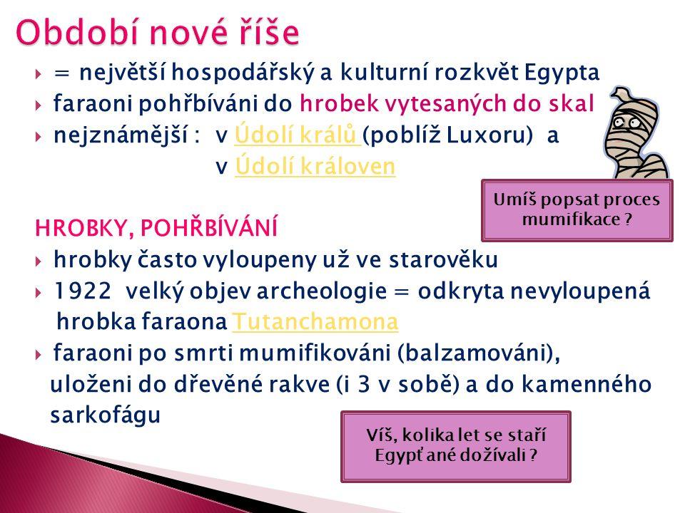 MARKH.Wikipedia.cz [online]. [cit. 4.12.2012].