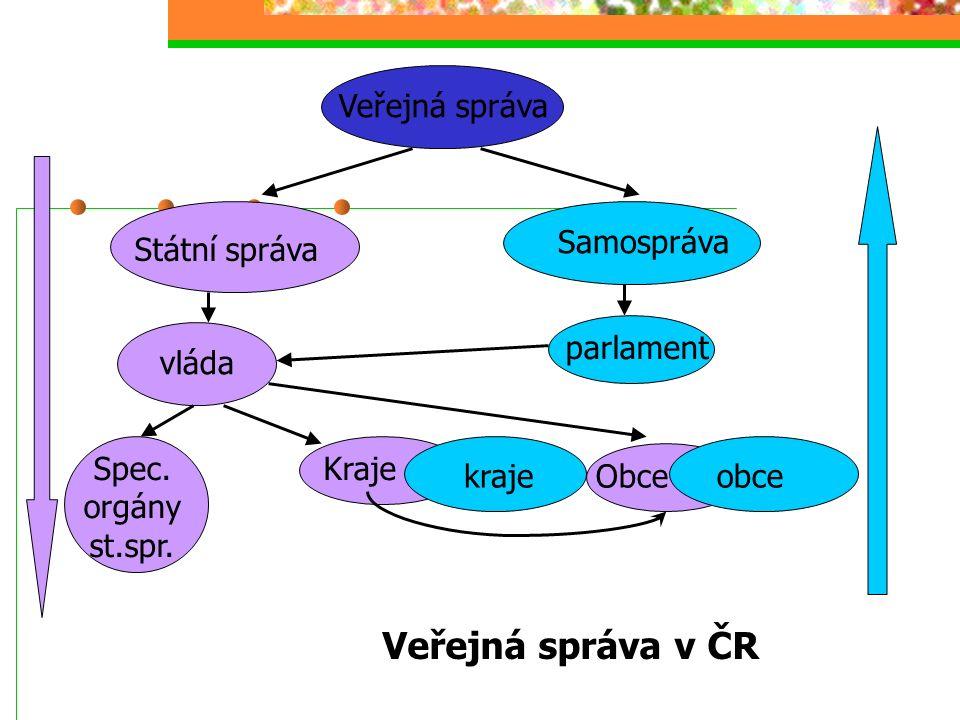 Veřejná správa Státní správa Samospráva vláda Spec.