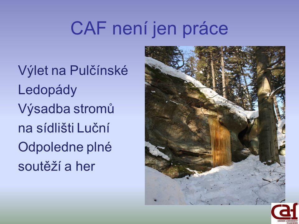 CAF není jen práce Výlet na Pulčínské Ledopády Výsadba stromů na sídlišti Luční Odpoledne plné soutěží a her