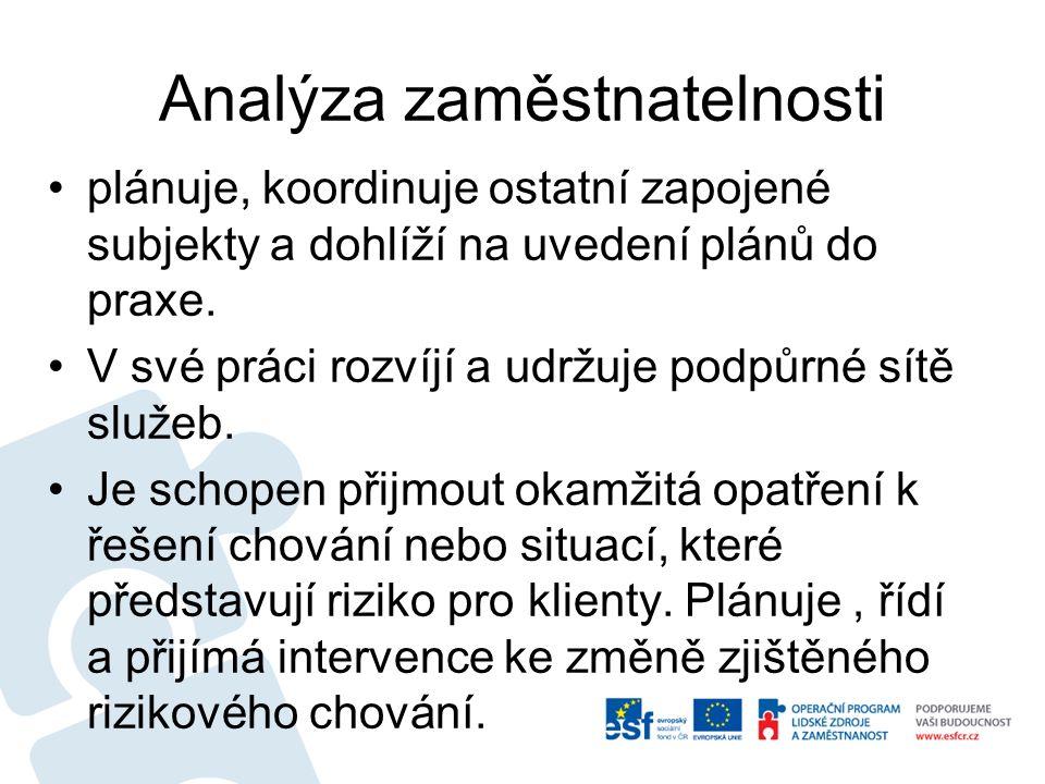 Analýza zaměstnatelnosti plánuje, koordinuje ostatní zapojené subjekty a dohlíží na uvedení plánů do praxe.