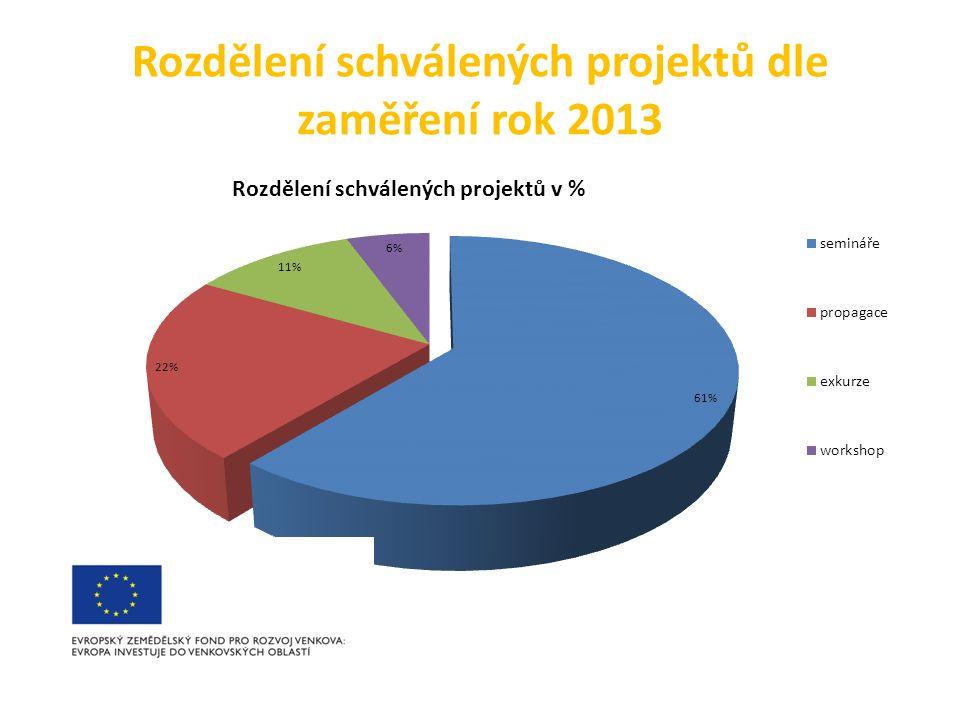 Rozdělení schválených projektů dle zaměření rok 2013