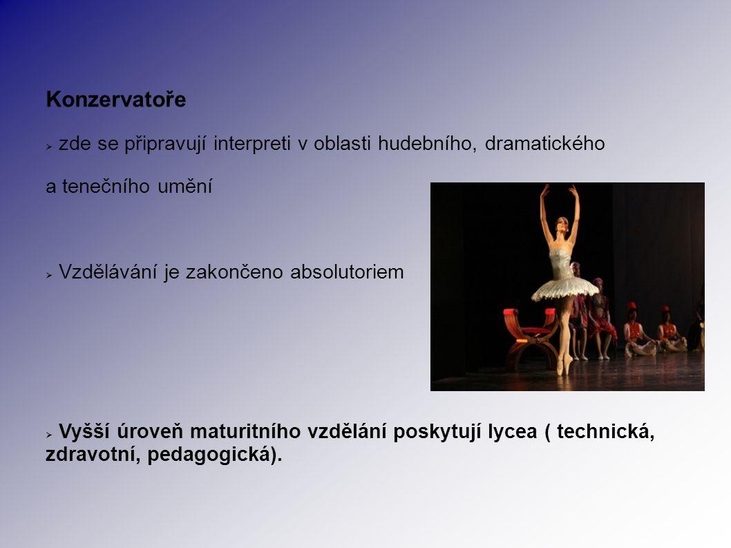 Konzervatoře  zde se připravují interpreti v oblasti hudebního, dramatického a tenečního umění  Vzdělávání je zakončeno absolutoriem  Vyšší úroveň maturitního vzdělání poskytují lycea ( technická, zdravotní, pedagogická).