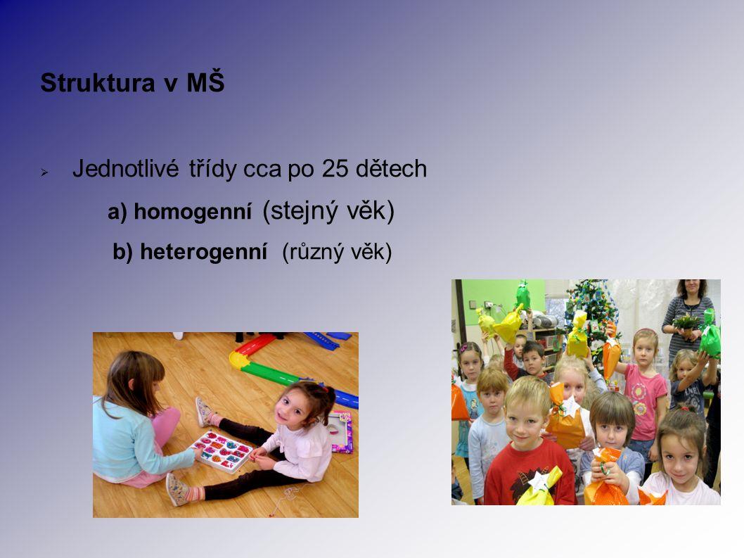 Struktura v MŠ  Jednotlivé třídy cca po 25 dětech a) homogenní (stejný věk) b) heterogenní (různý věk)
