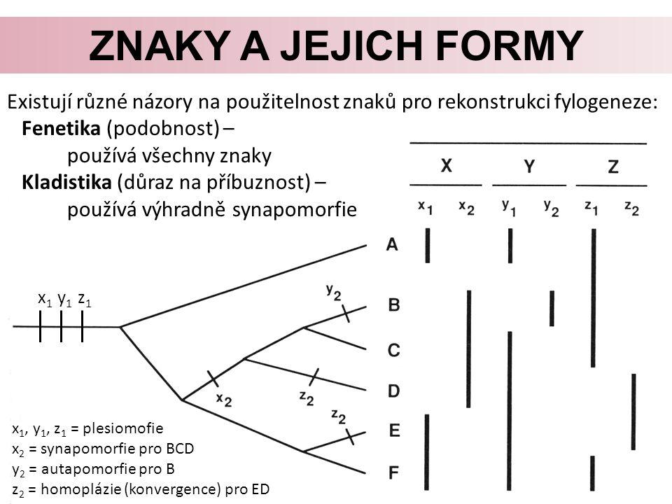 ZNAKY A JEJICH FORMY Existují různé názory na použitelnost znaků pro rekonstrukci fylogeneze: Fenetika (podobnost) – používá všechny znaky Kladistika (důraz na příbuznost) – používá výhradně synapomorfie x 1, y 1, z 1 = plesiomofie x 2 = synapomorfie pro BCD y 2 = autapomorfie pro B z 2 = homoplázie (konvergence) pro ED x 1 y 1 z 1