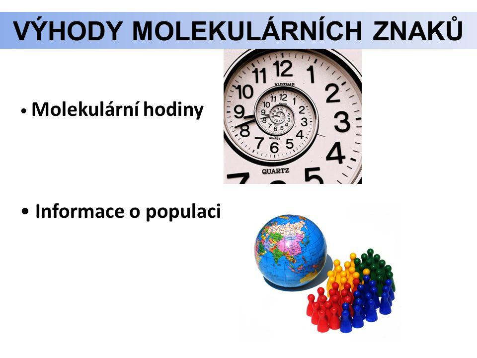 Molekulární hodiny Informace o populaci VÝHODY MOLEKULÁRNÍCH ZNAKŮ