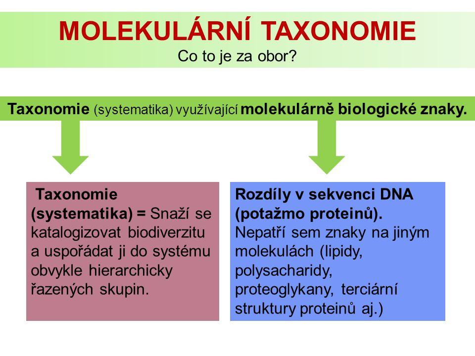 FYLOGENETIKA Podle většinového názoru taxonomů je nejlepším přirozeným systémem organizmů ten, který odráží průběh jejich fylogeneze.