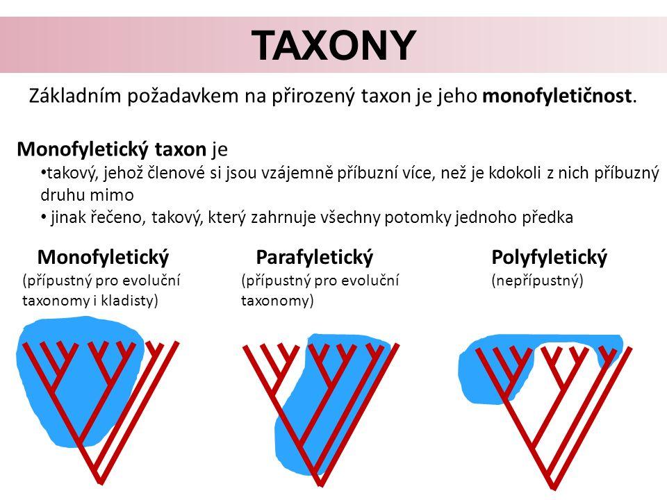 TAXONY Základním požadavkem na přirozený taxon je jeho monofyletičnost.