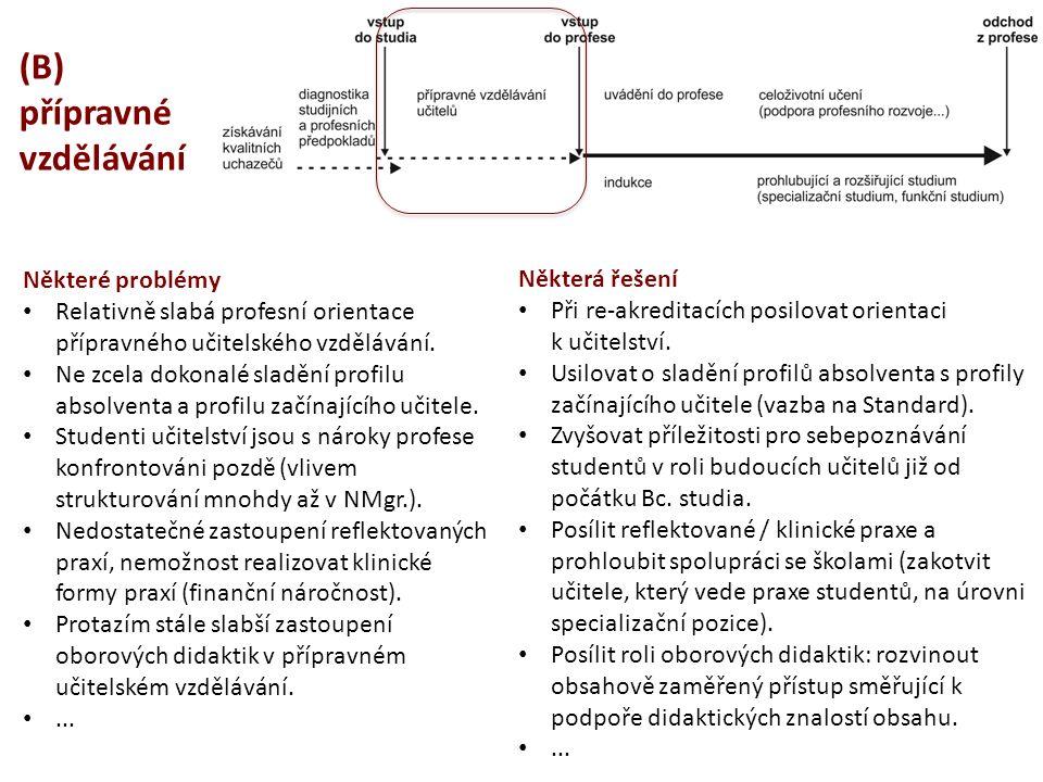 (B) přípravné vzdělávání Některé problémy Relativně slabá profesní orientace přípravného učitelského vzdělávání. Ne zcela dokonalé sladění profilu abs