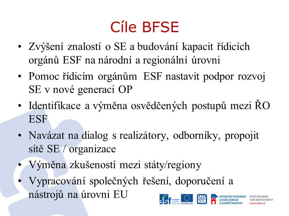 Cíle BFSE Zvýšení znalostí o SE a budování kapacit řídicích orgánů ESF na národní a regionální úrovni Pomoc řídicím orgánům ESF nastavit podpor rozvoj SE v nové generaci OP Identifikace a výměna osvědčených postupů mezi ŘO ESF Navázat na dialog s realizátory, odborníky, propojit sítě SE / organizace Výměna zkušeností mezi státy/regiony Vypracování společných řešení, doporučení a nástrojů na úrovni EU