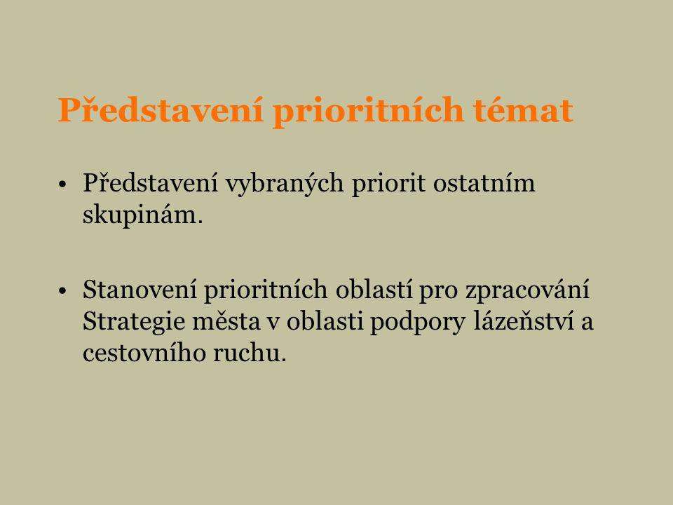 Představení prioritních témat Představení vybraných priorit ostatním skupinám.